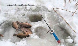 Астрахань: лед последний, клев хороший