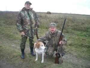 В Рязанской области изменили сроки охоты на зайцев