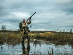 Полминуты для охотника