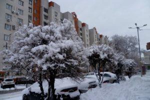 В Волгограде устойчивая зима