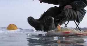 Особенности ловли с первого льда